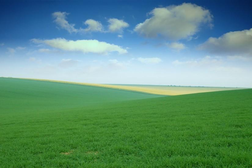 1920x1200 Green Field desktop PC and Mac wallpaper