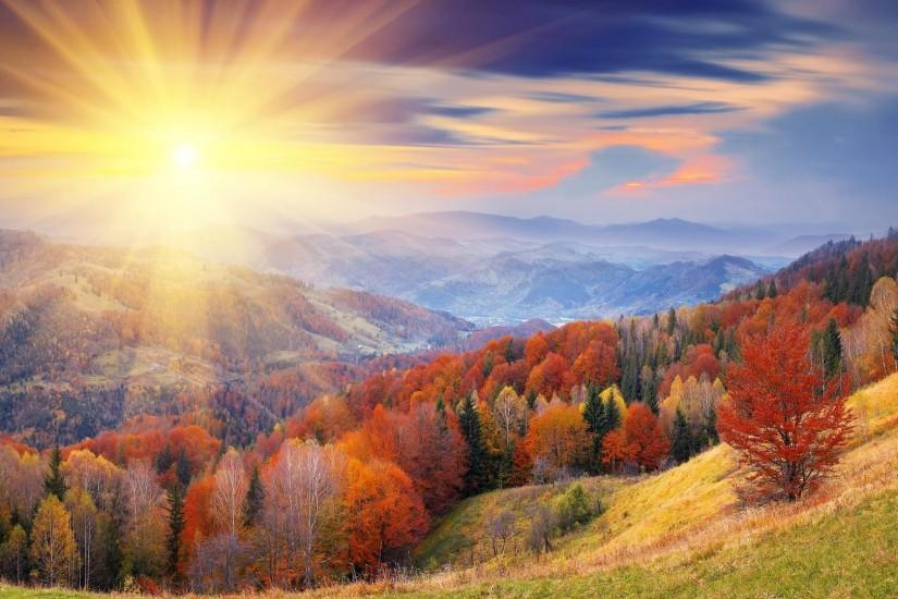 Autumn Forest Sunrise Wallpapers - 2560 x 1600 Wide