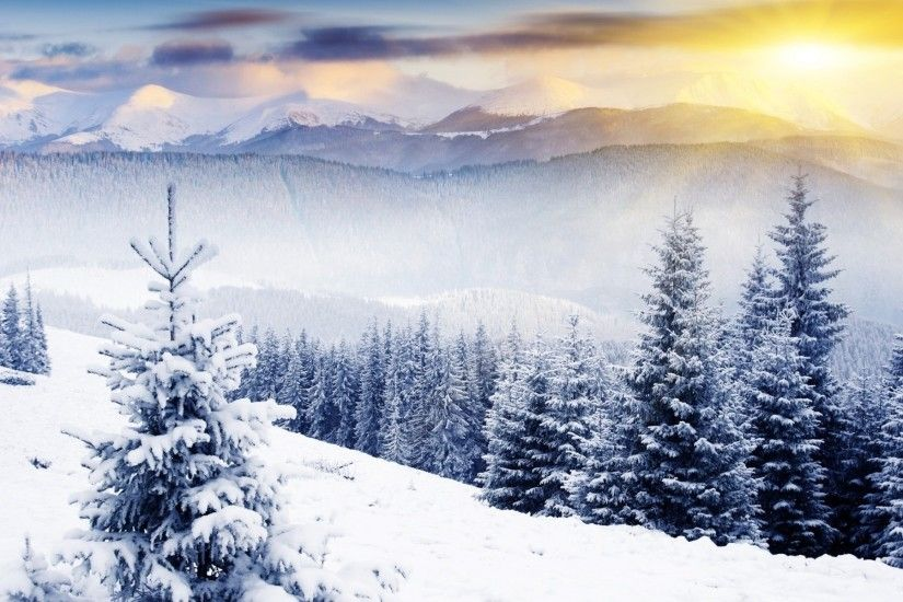 winter scenes - Desktop Wallpaper