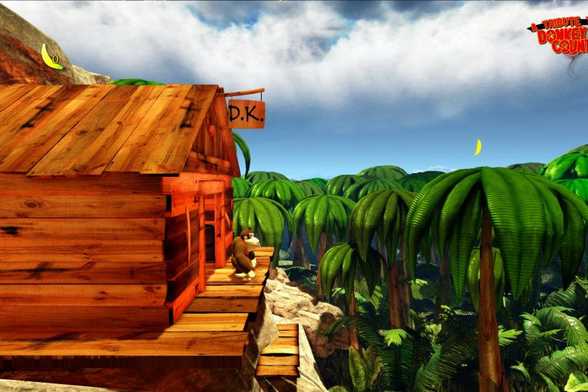 ... Donkey Kong Country Levels (view original)