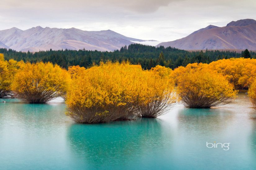 Download Bing Desktop for Windows 7 Daily Wallpapers ...