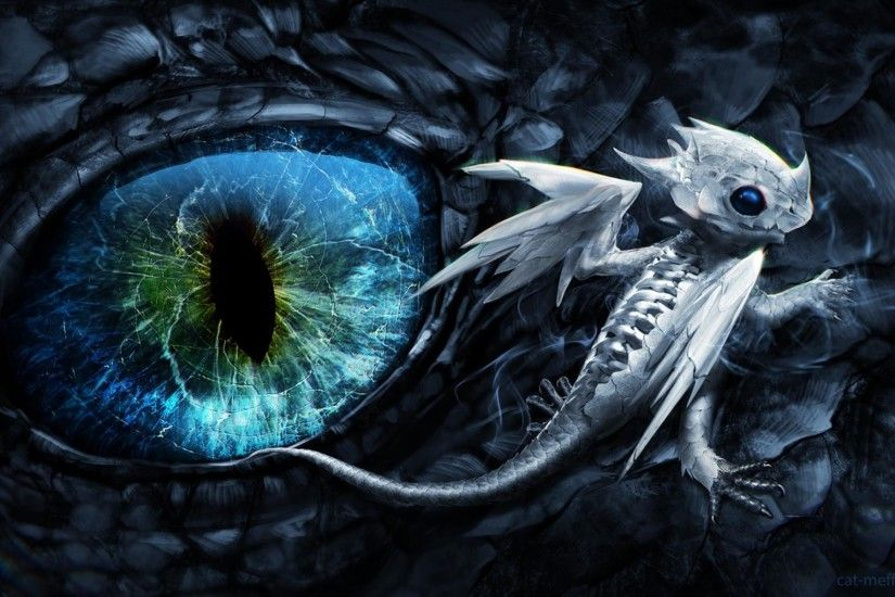 Baby black dragon blue eyes dark dragons wallpaper | (181919)