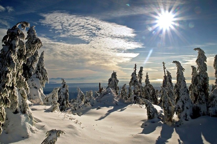 Winter Sun Wallpaper Winter Nature Wallpapers