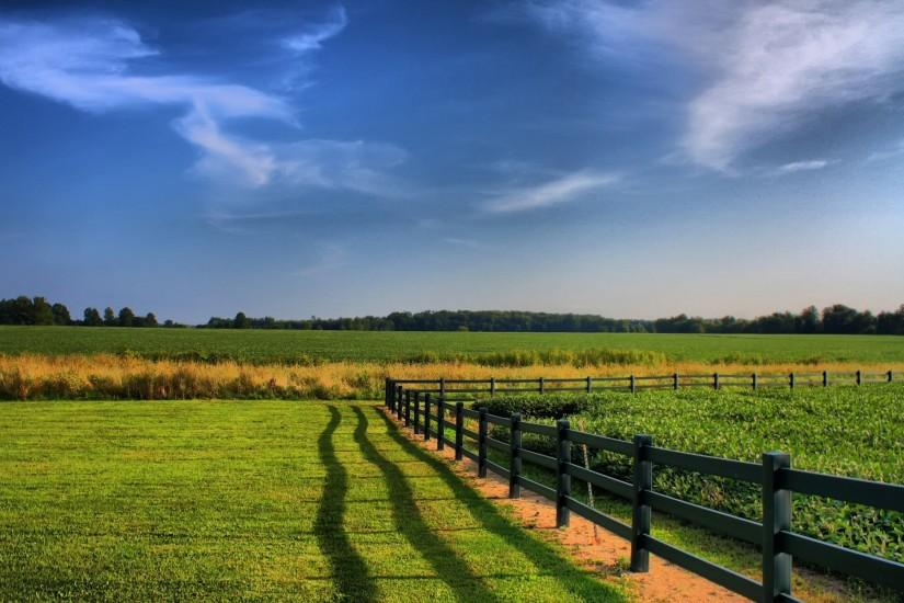 Earth - Field Fence Nature Green Grass Wallpaper