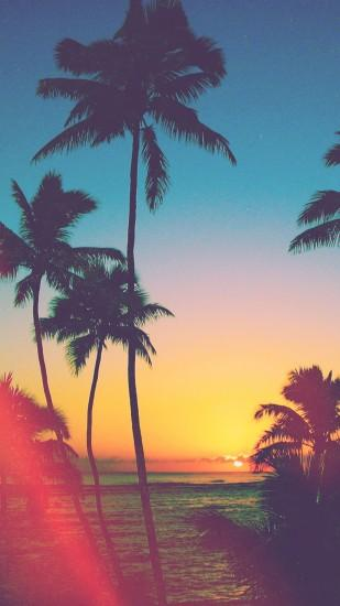 Tropicool – iPhone 5/6 Wallpapers | Graphic and Web Design – Salty .