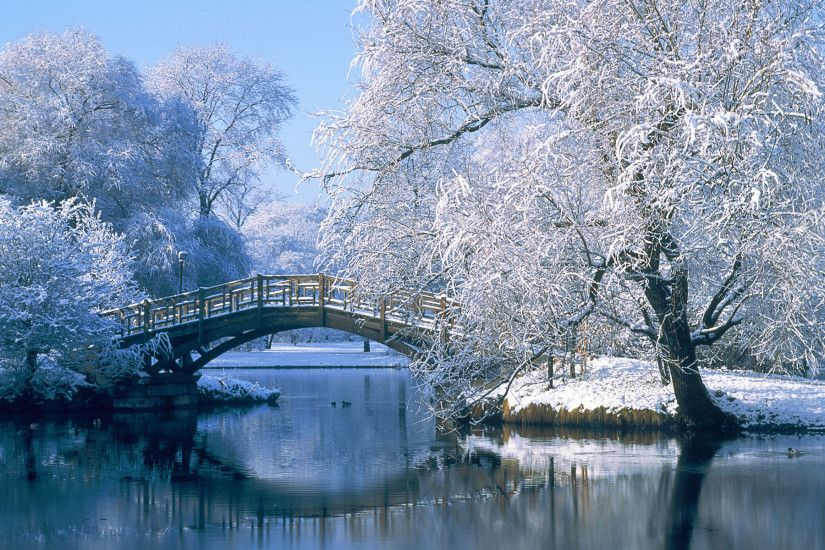 Photography - Winter Landscape Pond Water Bridge Tree Reflection Snow  Wallpaper