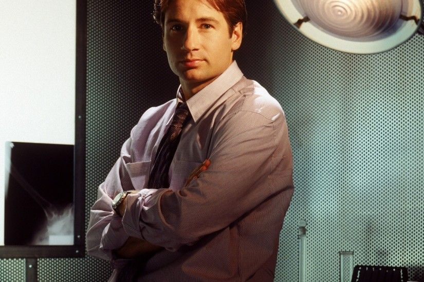 the x-files fox mulder david duchovny