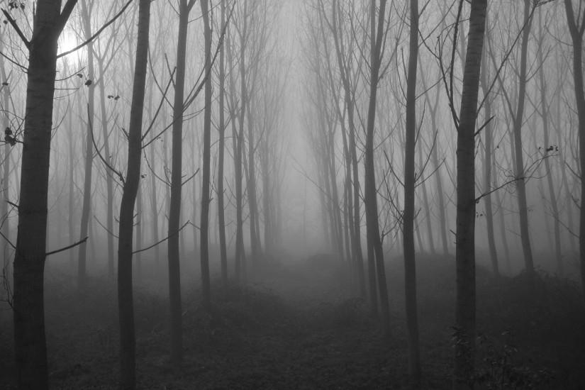 widescreen spooky background 2048x1360 picture