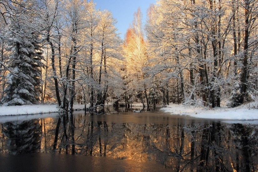 Winter Nature Image