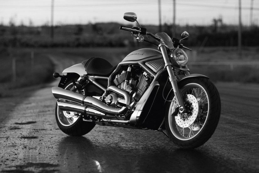 Harley Davidson Bikes Top Hd New Wallpaper