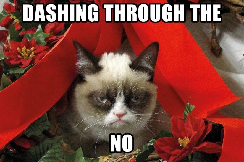Grumpy Cat Christmas 757946. SHARE. TAGS: Desktop Background Christmas Funny.  SPONSORED