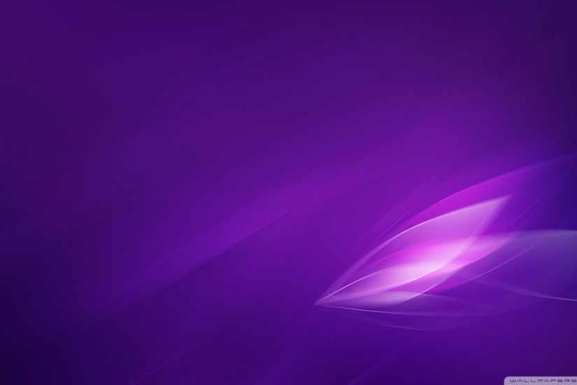 HD Wallpaper and background photos of Purple Wallpaper for fans of Colors  images.