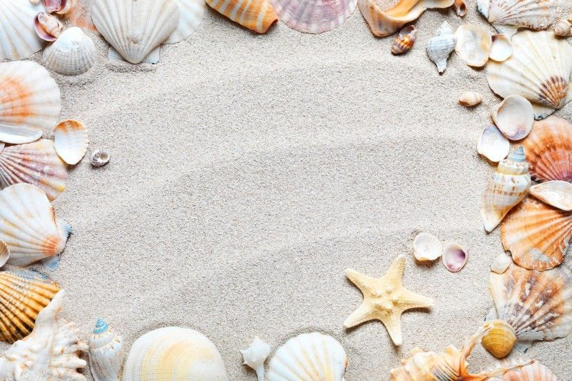 Beach Sand Shells Seashells Sea Starfishes Starfish 2k Wallpaper .