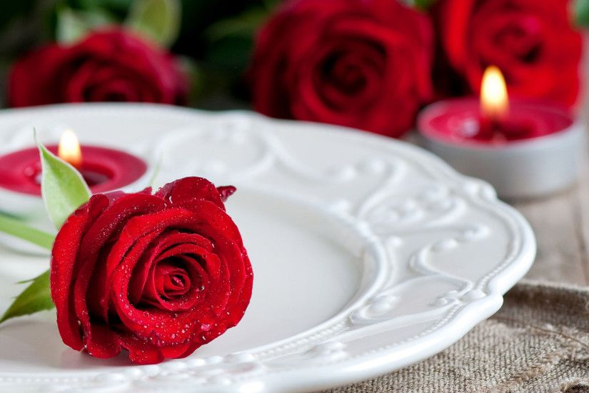 what-a-beautiful-look-red-roses-free-wallpapers-