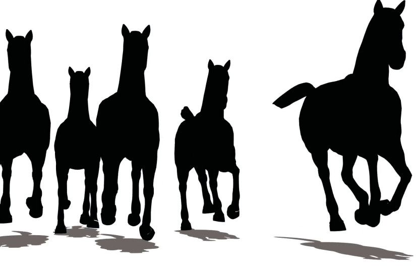 Run of herd of horses, the front view, black silhouette on white background  Stock Video Footage - VideoBlocks