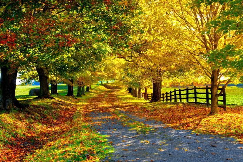 autumn stunning pictures. Â«Â«