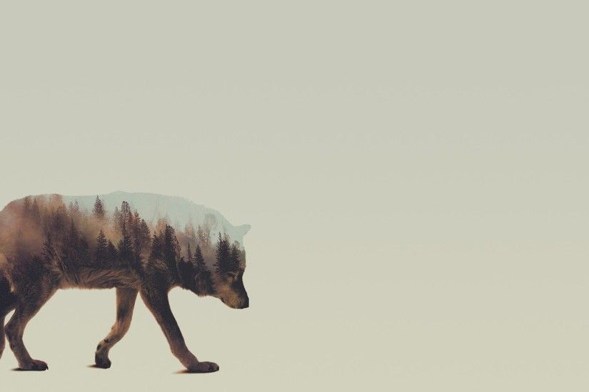 Lonesome wolf wallpaper - Digital Art wallpapers - #47201