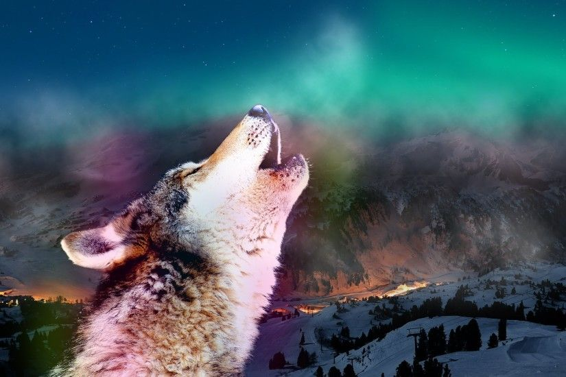 Howling Tag - Auroras Animals Howling Wolf Aurora Wolves Sky Nature  Wallpaper Desktop for HD 16