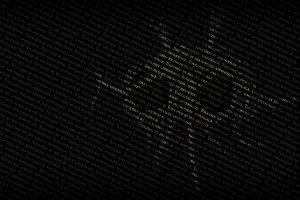 Fsm Wallpaper 1920x1080 notebook